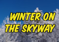Winter Along the Skyway